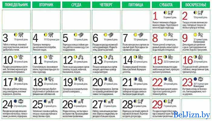 лунный календарь на февраль 2020 года