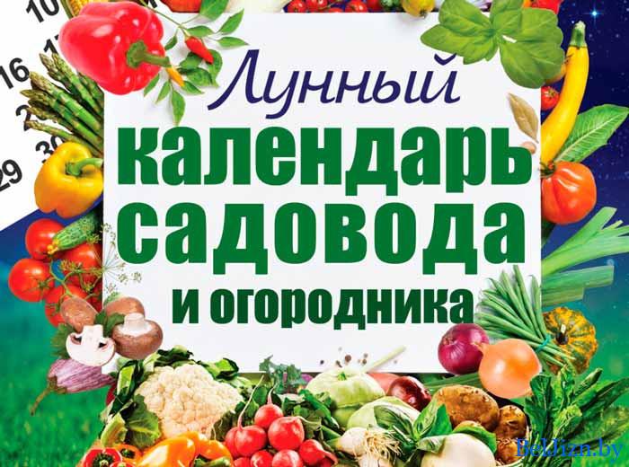 календарь огородника на 2020 для Беларуси